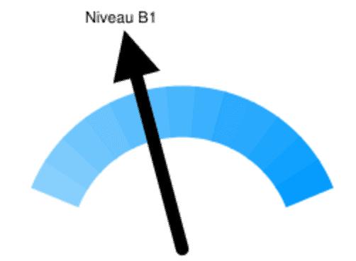B1-niveau